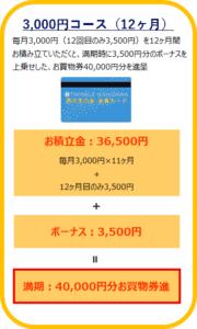 TWINKLE西沢友の会3000円12ヶ月コース