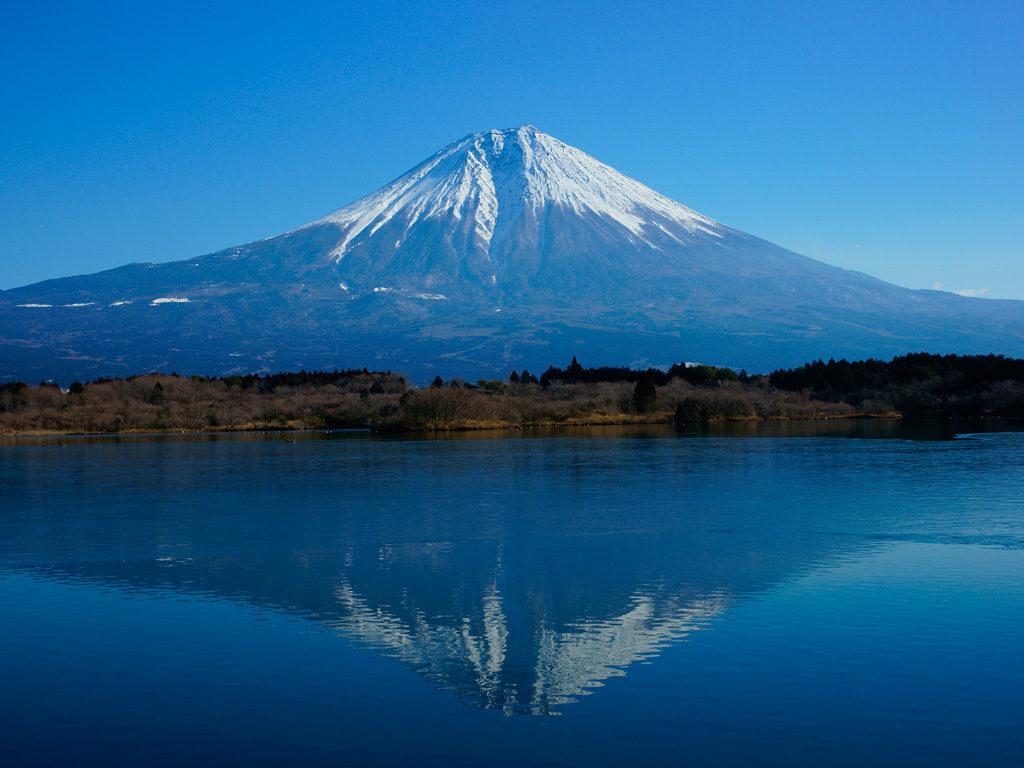 縁起の良い富士山に、明るい令和を祈念。