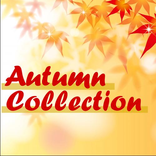 2019秋のトレンドをキャッチ!Autumn Collection